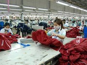 Vietnamese garment firms post solid Q3 results