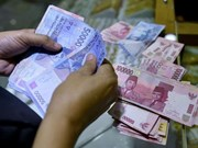Indonesia announces new economic packet to revive growth