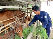 Vietnam strives to implement sustainable poverty reduction solutions
