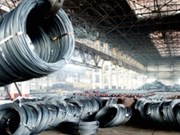 Steel industry might grow 12 percent in next 2 years