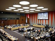 Vietnam elected to UN Economic and Social Council