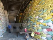 Indonesia to import rice from Vietnam, Thailand