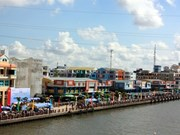 Synchronous planning needed to prevent inundation in Mekong Delta