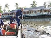 Pollution harming Phu Quoc Island environment
