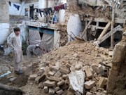 Vietnam keeps an eye on Vietnamese in quake-hit countries