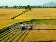 Japanese corporation to introduce farming machinery to Can Tho