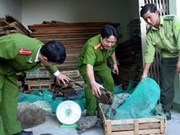 Vietnam, African nations target wildlife trade