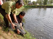Denmark helps Vietnam promote bio-diversity conservation