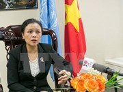 Vietnam supports UN peacekeeping efforts
