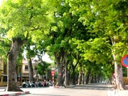 Hanoi works towards green city