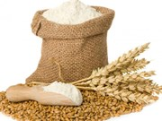 Vietnam suspends import of wheat from Ukraine