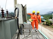 Electricity of Vietnam sells stakes in companies
