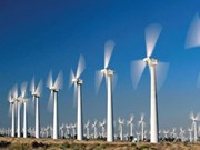 German wind energy firms explore partnerships