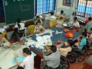 Israel ready to help Vietnam care for disabled, elderly: diplomat