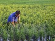 Vietnam, Pakistan move to boost trade