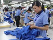 Binh Duong lures over 3 bln USD in FDI