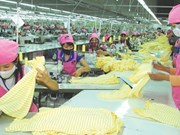 Phu Tho province boosts investment