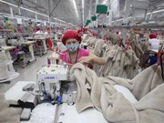 Hanoi's exports continue rebounding in November