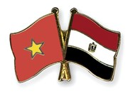 Vietnamese Ambassador presents credentials to Egyptian President