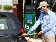 Hanoi promotes use of biofuel