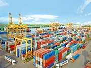 Hai Phong Port aims for 35 million tonnes of goods