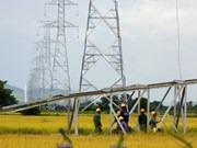 EVN SPC ensures power supply for islanders