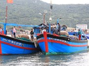 Vietnam Fisheries Society protests China's ramming local fishing boat
