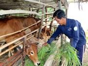 Da Nang city basically fulfills poverty reduction targets