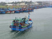 Quang Ngai fishermen equipped with ICOM devices
