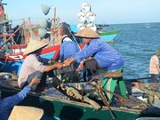 Fisheries trade union protests Chinese ships' attacks on VN's boats
