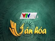 VTV Cab launches culture channel