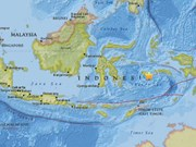 Indonesia quake injures eight, damages houses