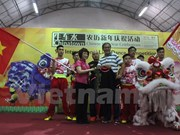 Vietnam attends 9th International Lion Dance Competition