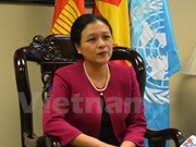 Vietnam faces opportunities, challenges in UN programme realisation