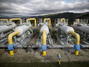 Japanese company hopes to build gas storage in Ha Nam province