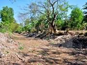 Ca Mau announces drought emergency