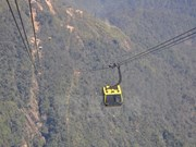 Guinness cable car offers services to over 40,000 tourists