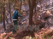Forest fires threatens areas across country