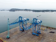 Giant cranes made in Vietnam shipped to central port