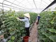 Hi-tech agricultural enterprises given loans