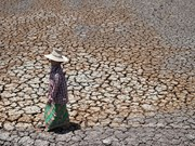 Thailand: drought might cut 0.8 pct of GDP