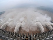 Laos helps Vietnam deal with drought, salt intrusion