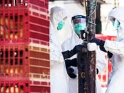 Malaysia, Thailand conduct anti-bird flu drill