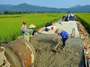 Vietnam hosts workshop on gender integration in rural transport