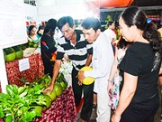Agro-fisheries festival opens in Ba Ria – Vung Tau