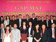 Government announces action plan on overseas Vietnamese