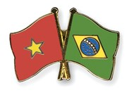 Vietnam, Brazil boost friendship