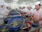 Bac Lieu to host Vietshrimp International Fair 2016 in June