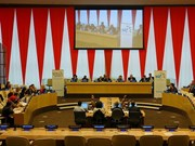 Vietnam attends UN policy integration discussions
