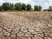 Organisations support farmers affected by drought